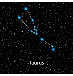 Taurus Zodiac sign bright stars vector
