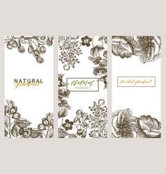 Vintage floral cards set frame with engraving vector