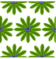 butterfly and banana leaves seamless pattern vector image