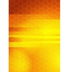 Bright summer hexagon background vector image