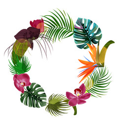Bright tropical plants frame exotic leaves vector