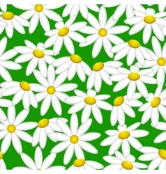Camomile on a green background Pattern seamless vector