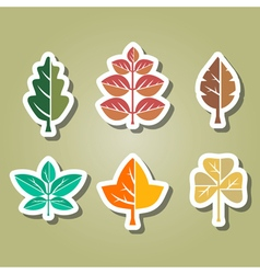 color icons with different leaves vector image