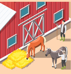 horse breeding isometric background vector image