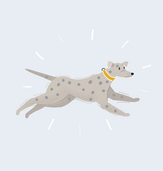 running dalmatian on white vector image