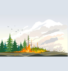 Wildfire burning trees nature disaster vector
