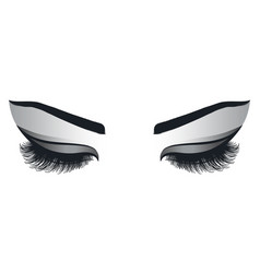 female eyes with long eyelashes vector image