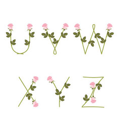 Floral alphabet pink roses from u to z vector