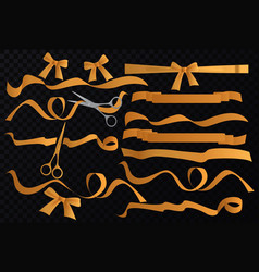 golden tapes ribbons set with scissors on vector image