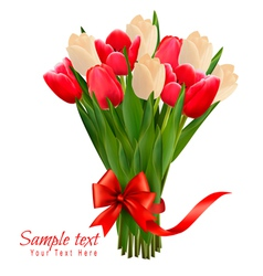 holiday background with bouquet colorful vector image