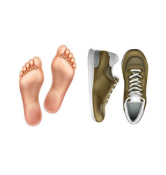 left and right foot soles vector image