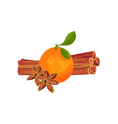 Orange with sticks and cinnamon flowers vector
