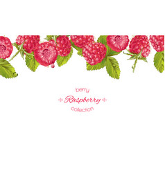 Raspberry horizontal banner vector