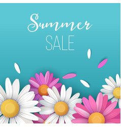 summer sale background with colorful daisy flowers vector image