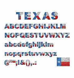 texas flag font on a brick wall vector image