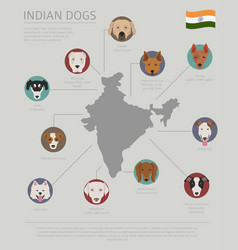 Dogs country origin indian dog breeds vector