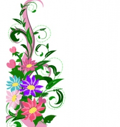 flowers hollyhocks vector image