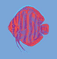 graphic aquarium fish concept vector image