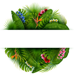 green summer background with tropical leaves vector image