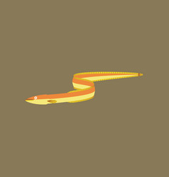in flat style eel vector image