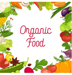 Organic vegetables fresh veggies salads spice vector