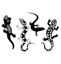 set stylized lizard a collection decorative vector image