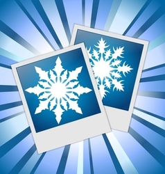 Snowflakes photos vector image
