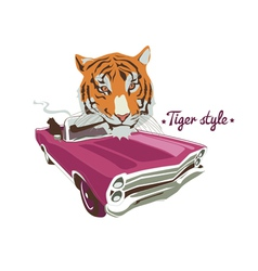 Tiger with purple retro auto vector image