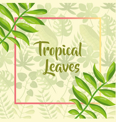 tropical leaves label template exotic branches vector image