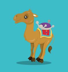 Alladin camel 11 vector