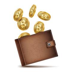 Bitcoin wallet money brown bitcoin vector