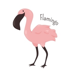 Cartoon pink flamingo isolated on white vector