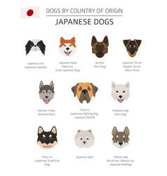 dogs by country of origin japanese dog breeds vector image