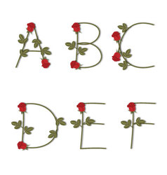 Floral alphabet Red roses with shadow from A to F vector