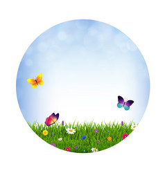 grass and flowers ball vector image