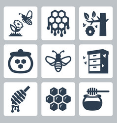 honey related icons set vector image