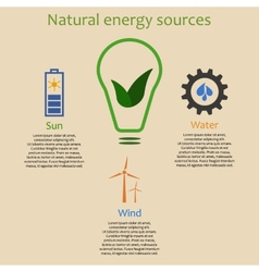 Infographics of natural energy vector image