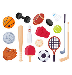 sport equipment cartoon balls and gaming item for vector image