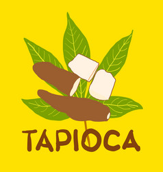 Tapioca fruit on green leaf and hand drawn text vector