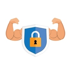 Metal padlock shield on white vector image