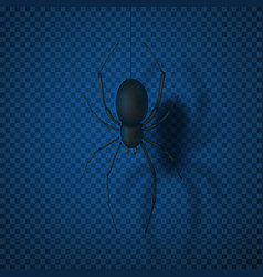 Black spider isolated on transparent backdrop vector