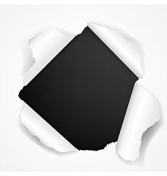 Black Torn vector