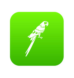 brazilian parrot icon digital green vector image
