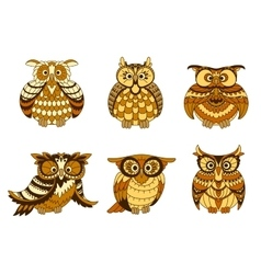 Cartoon owls with brown and orange plumage vector image