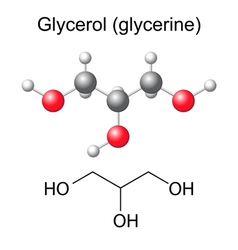 Chemical formula and model of glycerol molecule vector image