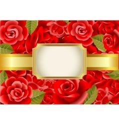 Frame on a red roses background vector