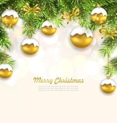 natural christmas background with fir twigs vector image