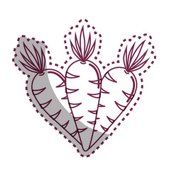 Sticker silhouette carrots vegetable icon image vector