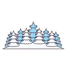 winter landscape with pines on silhouette color vector image