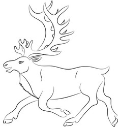 silhouette of deer outline vector image